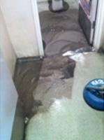 Hard Floor Cleaning on Linoleum