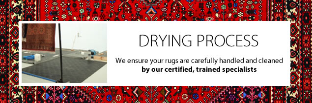 rug-cleaning-carrum-downs